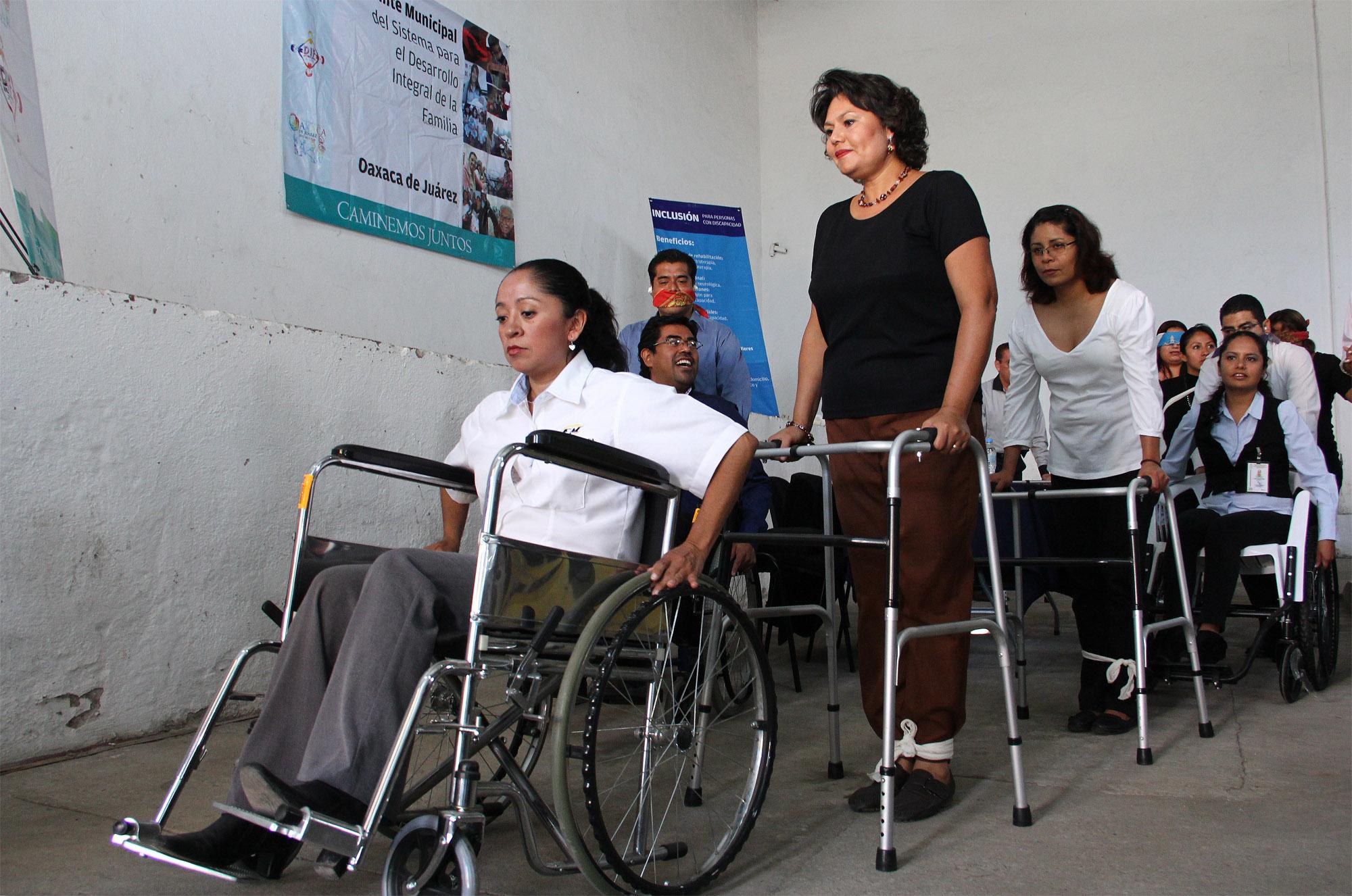 INICIAR SESIÓN EN EL CONAPDIS