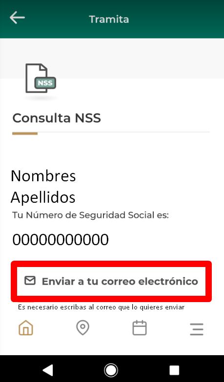 consulta de NSS