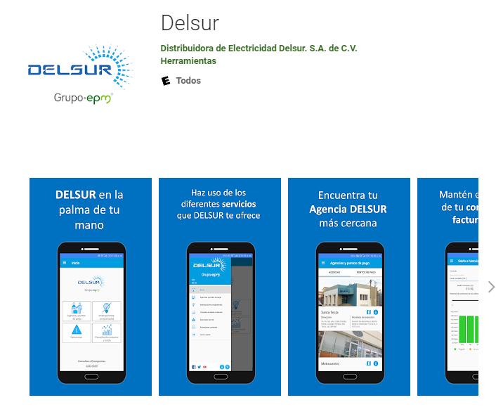 Banco Del Sur online app